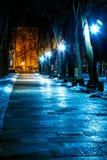 Parque en la noche en invierno fotos de archivo