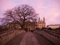 Parque en la universidad Cambridge de la trinidad en la puesta del sol Fotografía de archivo libre de regalías