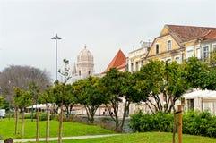 Parque en Lisboa con los árboles de mandarín portugal Fotos de archivo