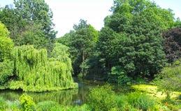 Parque en Londres Fotografía de archivo libre de regalías