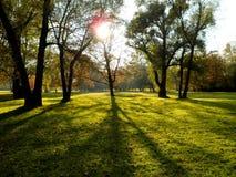 Parque en New York City Fotos de archivo