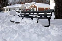 Parque en nieve del invierno Fotos de archivo