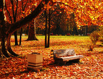 Parque en noviembre fotos de archivo libres de regalías