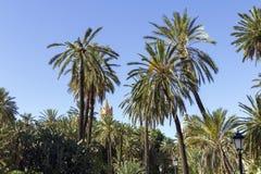 Parque en Palermo Fotografía de archivo
