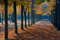 Parque en París imágenes de archivo libres de regalías