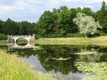 Parque en Pavlovsk Imagenes de archivo