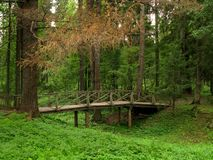 Parque en Shchelykovo imágenes de archivo libres de regalías