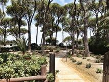 Parque en Toscana, Italia Foto de archivo