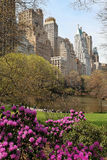 Parque en una gran ciudad Imagen de archivo libre de regalías