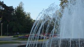 Parque en Vrnjacka Banja, en Serbia almacen de video