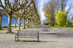 Parque encantador cerca del lago Fotos de archivo