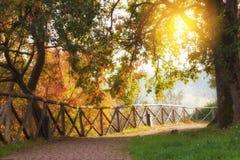 Parque ensolarado bonito imagens de stock royalty free
