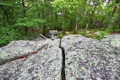 Parque estadual Alabama de Cheaha Fotos de Stock Royalty Free