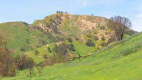 Parque estadual da angra de Malibu em Califórnia vídeos de arquivo