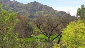 Parque estadual da angra de Malibu em Califórnia filme