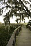 Parque estadual da pradaria de Paynes fotos de stock