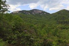Parque estadual da rocha da tabela em South Carolina foto de stock