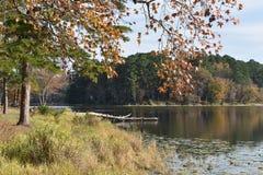 Parque estadual de Daingerfield em Texas foto de stock royalty free