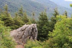 Parque estadual de suspensão Vew da rocha Imagem de Stock