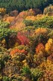 Parque estadual do lago devil, Baraboo, Wisconsin imagens de stock