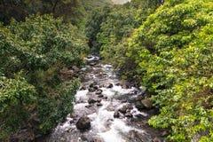 Parque estadual do vale de Iao em Maui Havaí Fotos de Stock Royalty Free
