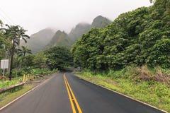 Parque estadual do vale de Iao em Maui Havaí Fotografia de Stock Royalty Free
