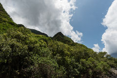 Parque estadual do vale de Iao, Maui ocidental Fotografia de Stock Royalty Free