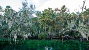 Parque estadual florida de Blue Springs fotos de stock