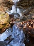 Parque estadual Illinois de Kickapoo Fotografia de Stock Royalty Free