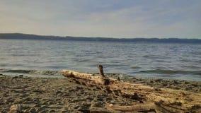 Parque estadual Puget Sound do ponto do traço de Seattle Imagem de Stock