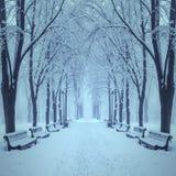 Parque fabuloso de la ciudad del invierno Imágenes de archivo libres de regalías