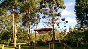 Parque faz Carmo - Sao Paulo, Brasil imagem de stock royalty free