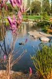 Parque floral con la charca del ornamento Fotos de archivo