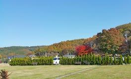 Parque floral en día soleado del otoño Imágenes de archivo libres de regalías