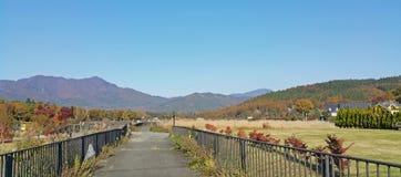 Parque floral en día soleado del otoño Imagenes de archivo
