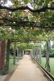 Parque font Anardo - Ponte De Lima Images stock
