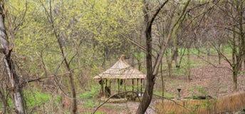 Parque fotografiado de la primavera Imagen de archivo libre de regalías