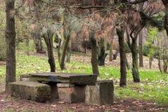 Parque fotografiado de la primavera Foto de archivo libre de regalías