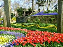 Parque Gulhane em Istambul Imagens de Stock Royalty Free