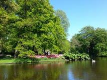 Parque hermoso con el lago y las flores, Keukenhof, Países Bajos foto de archivo libre de regalías