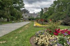 Parque hermoso con las flores en la plena floración y la hierba verde fotografía de archivo libre de regalías