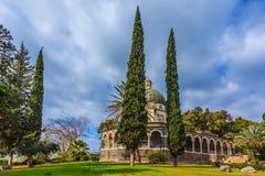 Parque hermoso de ciprés fotografía de archivo libre de regalías
