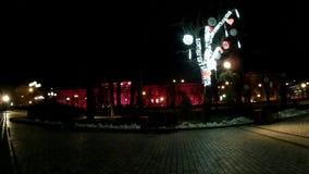 Parque hermoso de la ciudad de la noche con la decoración que brilla intensamente almacen de video