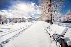 Parque hermoso del invierno Imagen de archivo libre de regalías