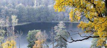 Parque hermoso del otoño Fotografía de archivo