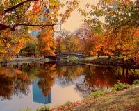 Parque hermoso en Boston a lo largo de Charles River en un día del otoño Fotografía de archivo
