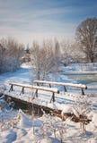 Parque hermoso en el invierno Foto de archivo