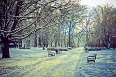 Parque hermoso en invierno Foto de archivo libre de regalías