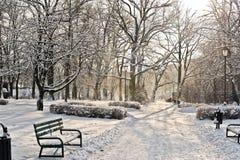 Parque hermoso en invierno Fotografía de archivo libre de regalías