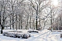Parque hermoso en invierno Imagen de archivo libre de regalías